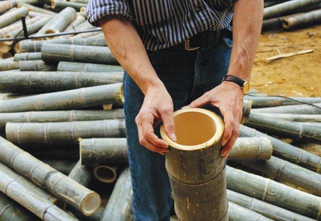 Bureau_cambium-bamboe-bamboo-stammen