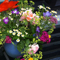 Bureau_cambium-zweiersdal-vrij-markt-bloemen_60x60