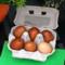 Bureau_cambium_zweiersdal_vrij_markt-eieren60x60